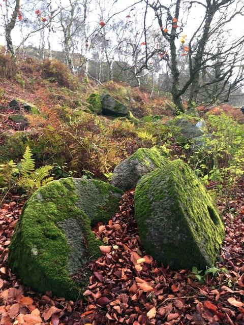 Abandoned millstones in Bolehill Quarry