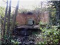 SJ8450 : Culvert in Bradwell Woods by Jonathan Hutchins