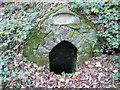 SM9818 : St Leonard's Well, Rudbaxton by Humphrey Bolton