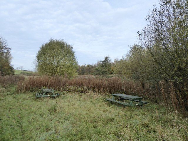 Overgrown picnic tables by Bradwell Woods