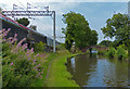 SJ9621 : Towpath along the Staffordshire and Worcestershire Canal by Mat Fascione