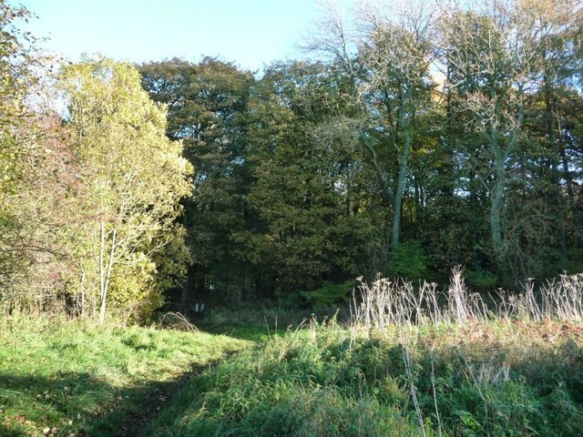 Public footpath south-east into Park Wood