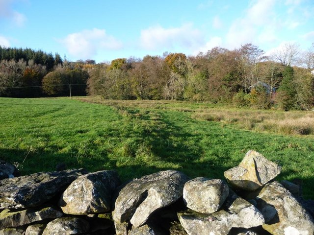 Vestigial field boundary, south-west of Well Knowe