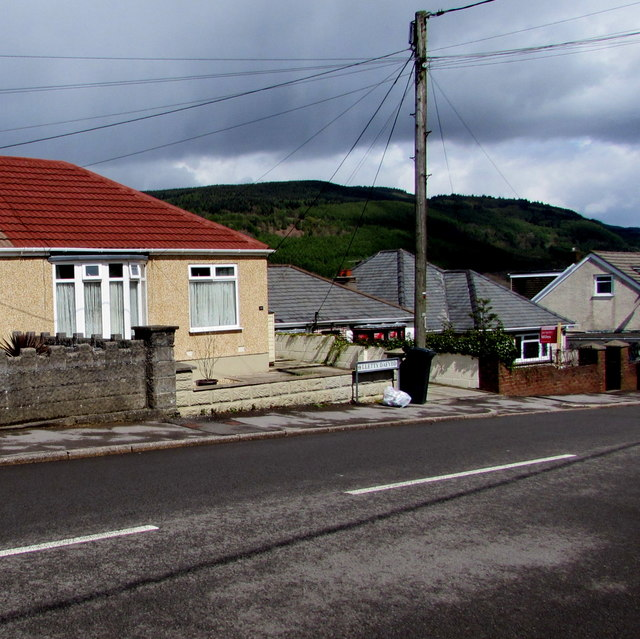 Wires over Lletty Dafydd, Clyne