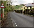 SN8000 : Warning sign - road narrows, Lletty Dafydd, Clyne by Jaggery