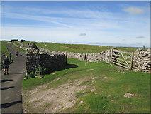 SD8283 : Cold  Keld  Gate  at  footpath  junction by Martin Dawes