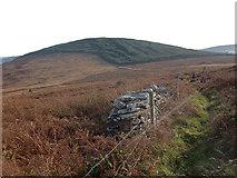 S8757 : John's Hill by kevin higgins