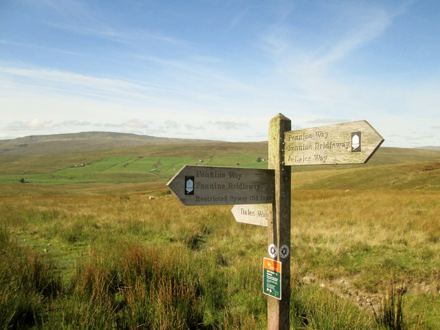A  footpath  junction  on  the  high  moor