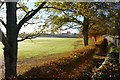 NC8300 : Golspie High School Playing Field by Andrew Tryon
