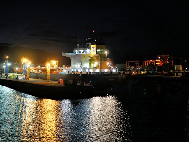 Port of Dublin at Night