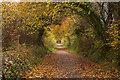 SX0670 : Camel Trail by Guy Wareham