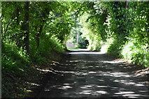 TQ4945 : Lane to Chiddingstone by N Chadwick
