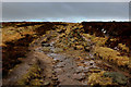 SE0432 : Bridleway on Thornton Moor by Chris Heaton