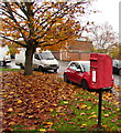 SO8963 : Queen Elizabeth II postbox near a carpet of dead leaves, Droitwich by Jaggery
