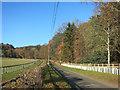 SU7685 : Benham's Lane by Des Blenkinsopp