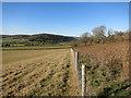 SU7985 : Hambleden Valley by Des Blenkinsopp