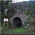 SD4879 : Low Wood Edge Kiln by Ian Taylor