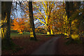 SD4980 : Dallam Park by Ian Taylor