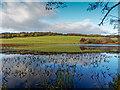 NH6750 : Loch Lundie by valenta