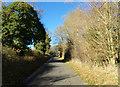 TM3272 : Heveningham Road, Ubbeston by Geographer