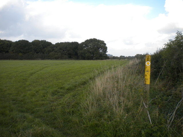 Public footpath south of Dawson's Plantation by Richard Vince