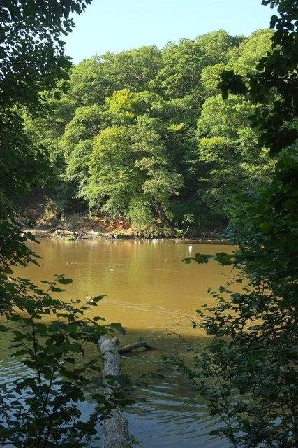 Lake, Lamorran