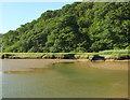 SW8741 : Across Lamorran Creek by Derek Harper