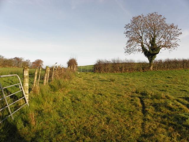 Derrybard Townland
