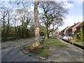 SJ9502 : Kitchen Lane, Ashmore Park by Richard Webb