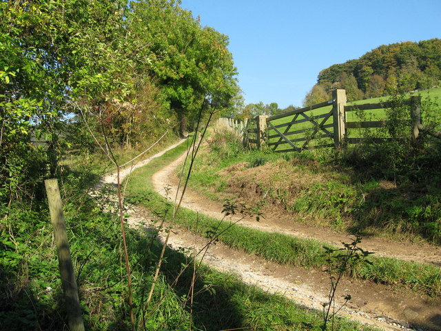 Down Hill track - Painswick, Gloucestershire
