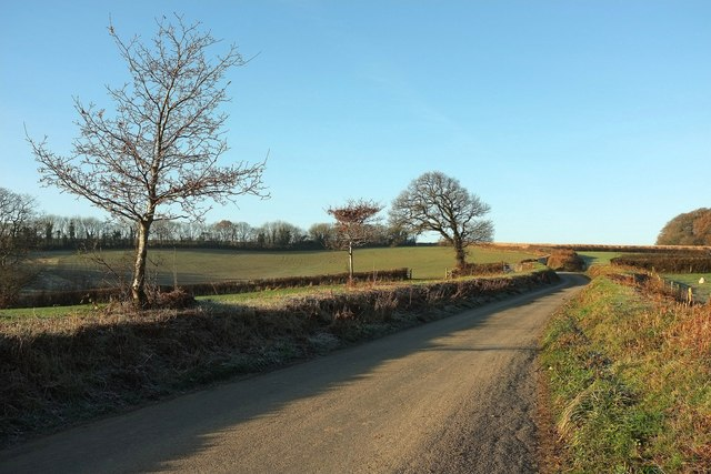 Lane to Hansford Cross