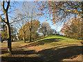 SU8398 : Open Space, Greenwood by Des Blenkinsopp