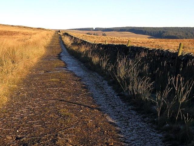 Track near Grey Hill