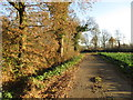 TF0777 : Bridleway from Snelland by Jonathan Thacker