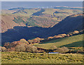SN7078 : A fine winter's light over Cwm Rheidol by Nigel Brown