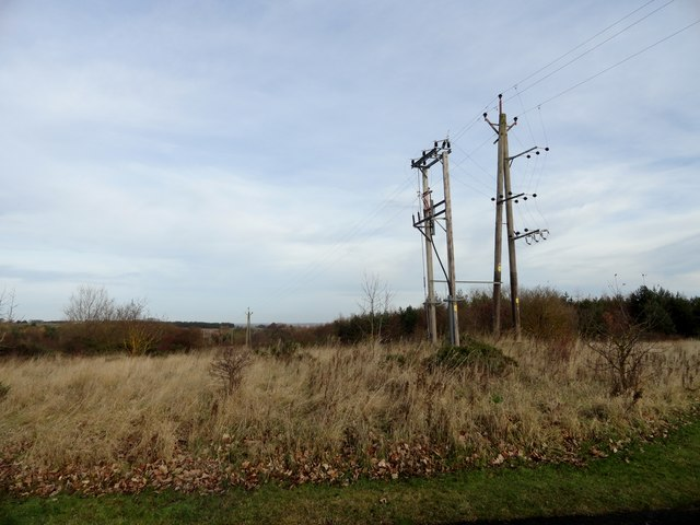 Telephone poles at the roadside
