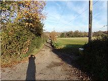 TG0822 : House Entrances off Kerdiston Road by Geographer