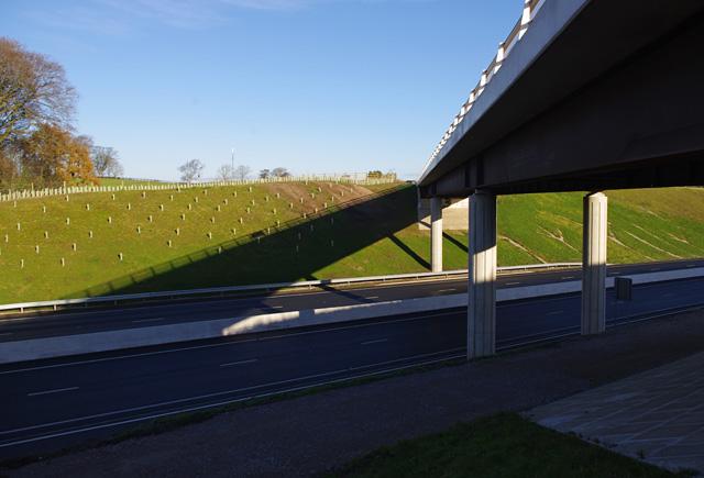Carus Bridge