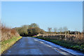 SP6431 : Road towards Tingewick by Robin Webster