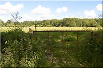 TQ5145 : Gated footpath by N Chadwick