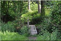 TQ5246 : Footbridge by Redleaf Wood by N Chadwick