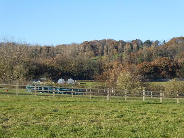 Looking towards Woodlands Farm