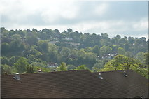 SU9948 : Looking across the Wey Valley by N Chadwick