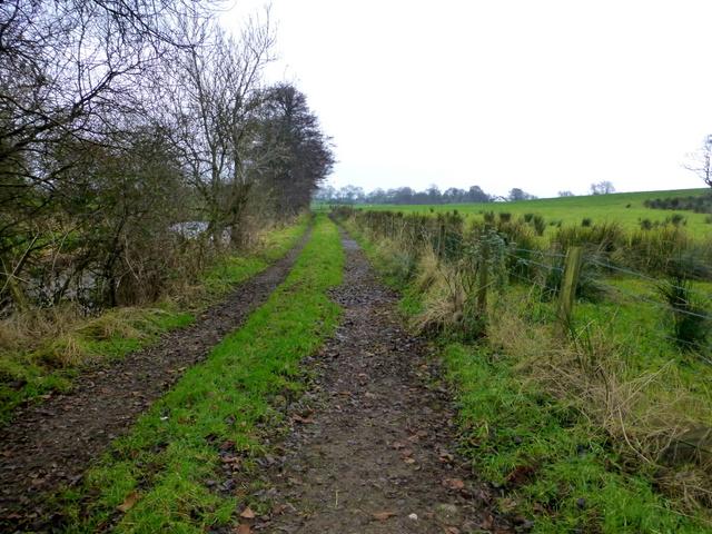 Muddy lane, Bancran