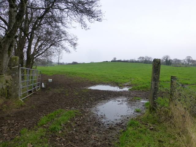 An open field, Drumduff
