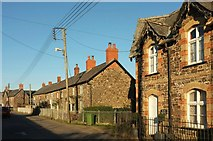 SS5318 : C19 cottages, St Giles in The Wood by Derek Harper