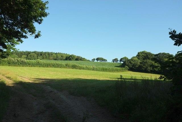 Countryside north of Lamorran