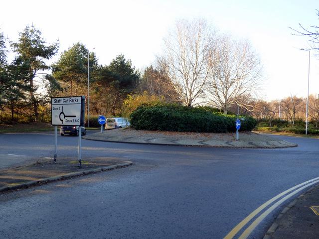 Roundabout on Sanderling Road
