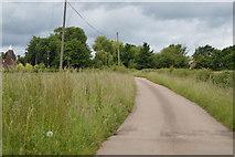 TQ5247 : To Wickhurst Farm by N Chadwick