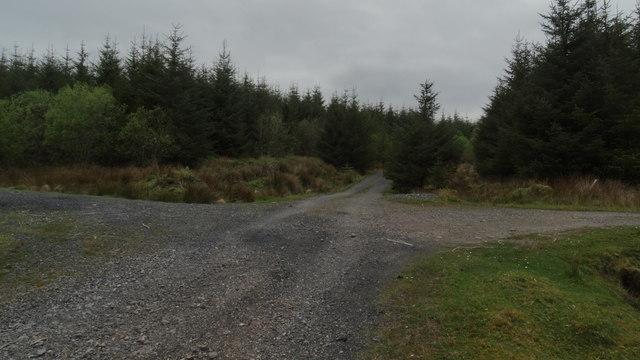 Forest cross roads SE of Birreen Corrough Beg